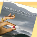 pigeon-blood-png