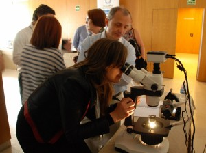 Advanced Diamond Workshop with instruments May 9 2016 Valencia MGJ Conference